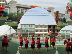 临港区团林姐妹博彩官网【春暖花开】
