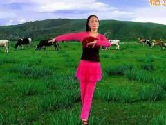 心儿爽秀儿博彩官网原创《dj情歌在草原》含正反教学