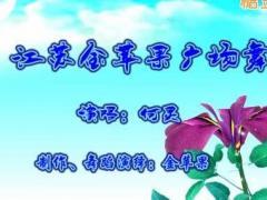 江苏金苹果舞蹈队《桅子花开》