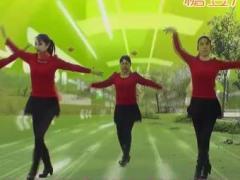 董家湾广场舞《歌在飞》
