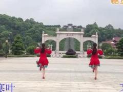 九江文清舞蹈队原创--多情的山丹(背面演示)热舞发布会