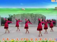 山东紫怡然博彩官网原创《放歌千里外》正背面演示附教学