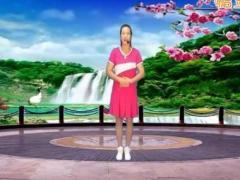 龙川高美人(伤不起)13原创含分解动作背面教学