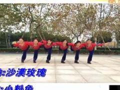 上海応粉徐汇滨江舞蹈队《假如爱有天意》