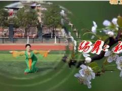 湖北黄梅厦安艺苑舞蹈队《梨花情》(集体)