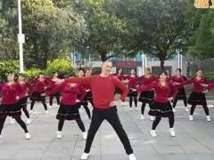 叶林广场舞(只愿一生陪着你)原创演示团队