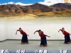 上海応粉徐汇滨江舞蹈队《打核桃》3人版