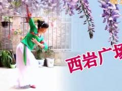 西岩广场舞《紫藤花》古典舞
