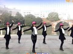 西湖莉莉广场舞《自由疯》 含分解
