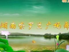 湖南紫罗兰博彩官网《春暖花开回故乡》