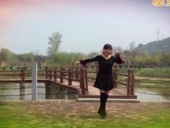 风中梅花秒速七星彩 最美最美 动动 编舞演示制作梅花